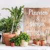 Stekjesruil 'Planten & meer'