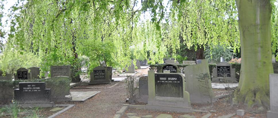 Diefstallen op begraafplaats in Borne