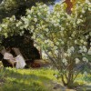 Lezing 'Tuinen' spiegel van het paradijs