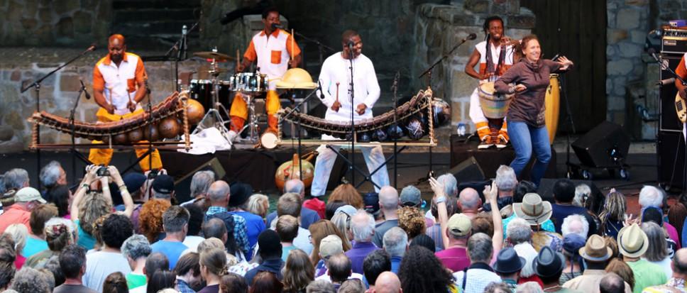 Afrika Festival doorslaand succes