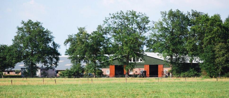 Kort geding over 'Stal Hemmelhorst'