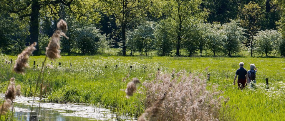 Kloosterpad: zomerse lentewandeling