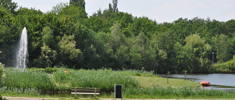 Zorgen om watervogels Weideplas