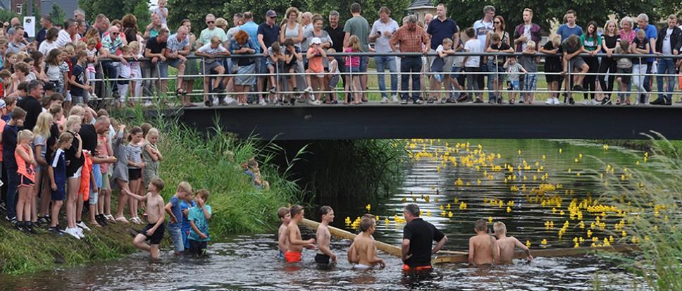 Badeendjes brengen honderden in vervoering