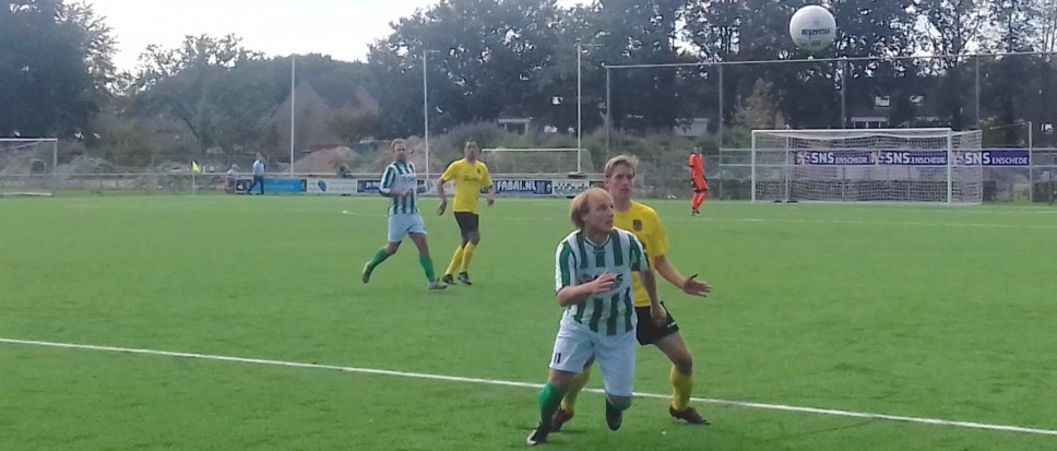 BVV Borne wint opnieuw
