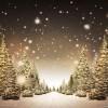 Kerst in Oud Borne