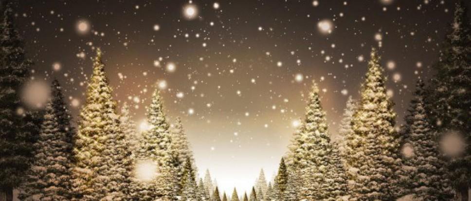 Beleef Kerstmis in Oud Borne