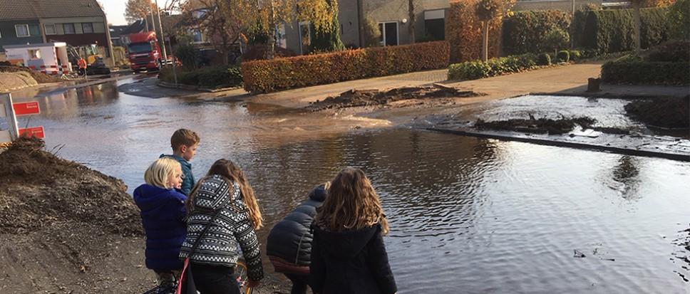 Waterballet in de Ververstraat
