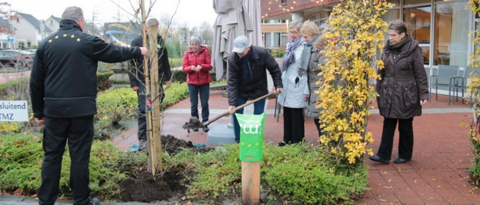 Amberboom geplant bij Dijkhuis