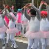 Carnavalsoptocht Zenderen