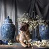 Meet en Greet met Fotograaf 'Hond in de Pot' - 31 jul