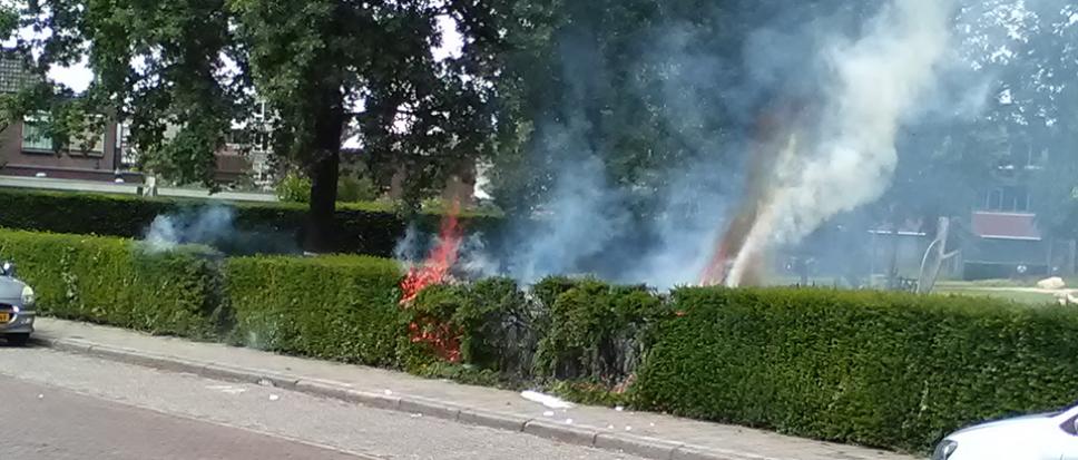 Brandende coniferen aan Aanslagsweg
