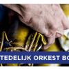 Jubileumconcert Stedelijk Orkest Borne