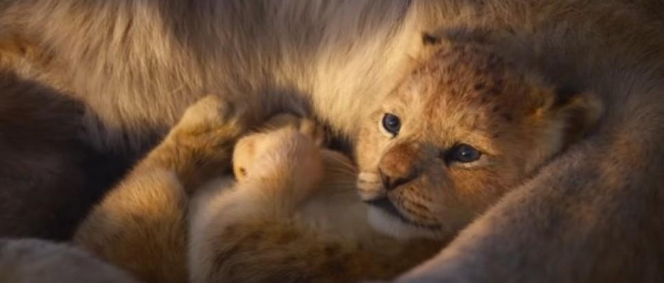 KidsBios: De Lion King (9+)