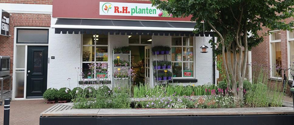 Nieuwe plantenwinkel ook zondag open